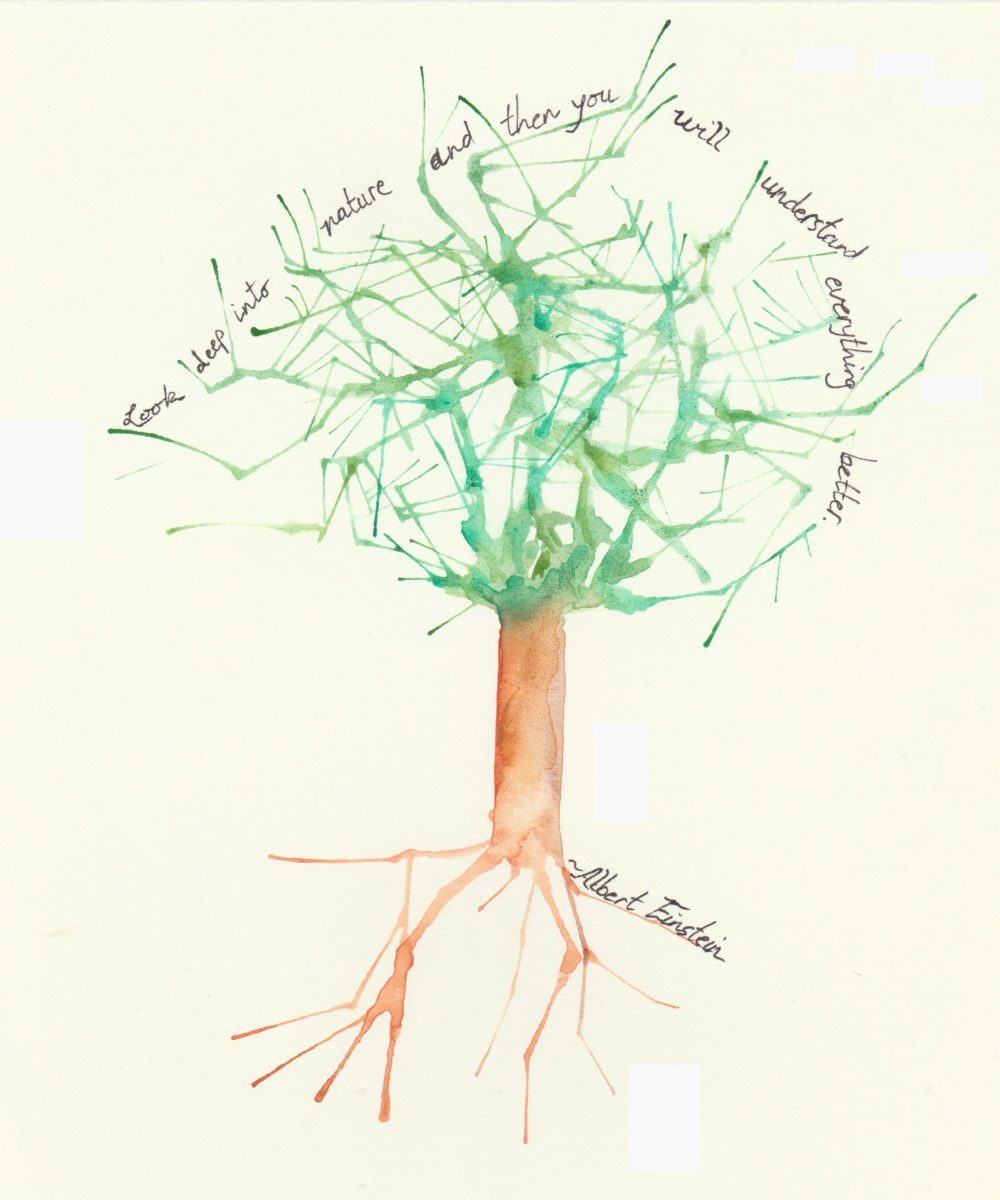 abstract-ish watercolor painting of tree with quote