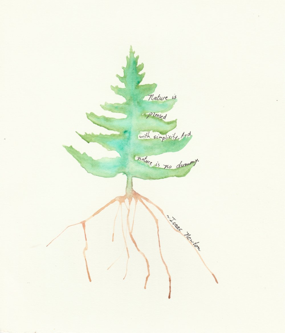 Watercolor Evergreen Tree with Isaac Newton quote